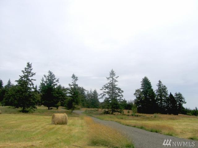 0 Bonnie Dr, San Juan Island, WA 98250 (#1338284) :: The Robert Ott Group