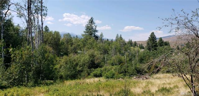 2 Apple Wy, Winthrop, WA 98862 (#1338793) :: Homes on the Sound