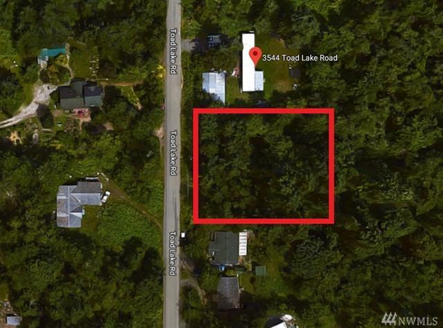 35 Toad Lake Rd, Bellingham, WA 98226 (#1338909) :: Brandon Nelson Partners
