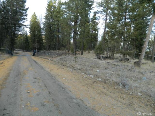 1111-TBD Bench Creek Rd, Tonasket, WA 98855 (#1339180) :: Homes on the Sound