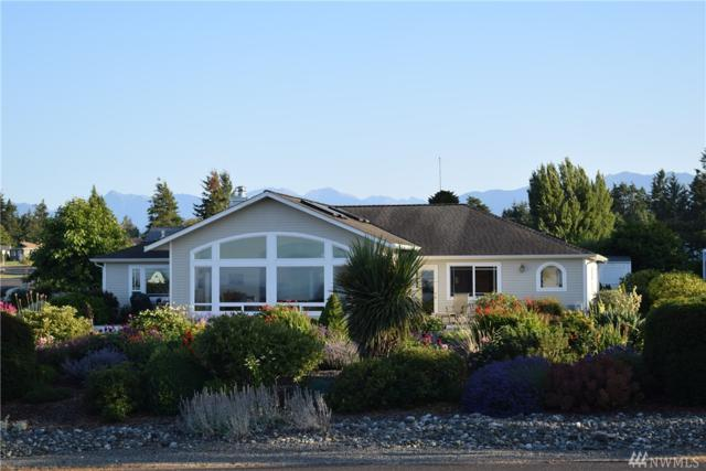 101 N Olympic View Ave, Sequim, WA 98382 (#1339301) :: Homes on the Sound