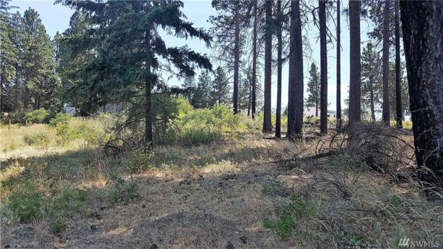 7-Lot 7 Morrison Canyon Lane, Cle Elum, WA 98922 (#1340275) :: Homes on the Sound