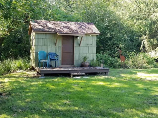 0 Pomeroy Lane, Tokeland, WA 98590 (#1340369) :: Homes on the Sound