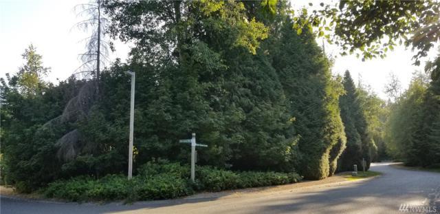 0 Snow Goose Lane, Blaine, WA 98230 (#1340398) :: The Vija Group - Keller Williams Realty