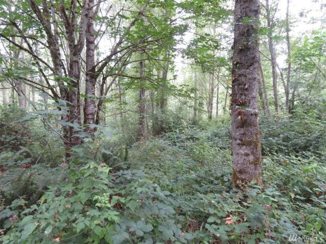 36120 108th Av Ct E, Eatonville, WA 98328 (#1340757) :: HergGroup Seattle