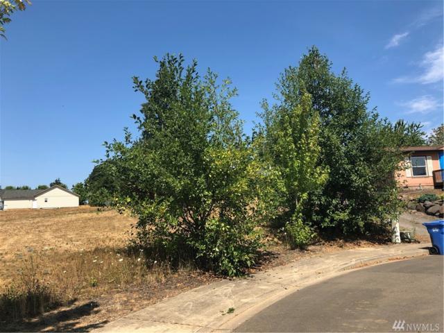 206 Fenway Ct, Napavine, WA 98565 (#1340830) :: Canterwood Real Estate Team