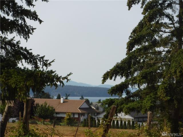 965 Terry Heights Lane, Camano Island, WA 98282 (#1340961) :: Keller Williams - Shook Home Group