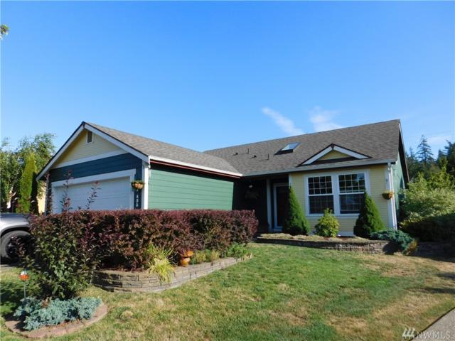 435 Stadium Lp, Napavine, WA 98565 (#1341044) :: Canterwood Real Estate Team