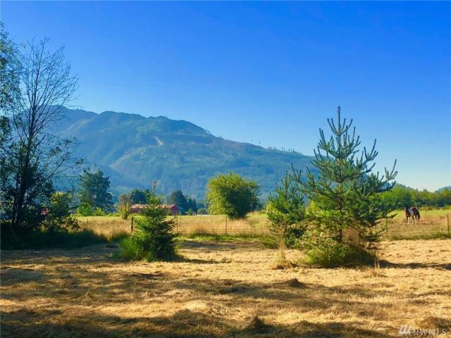 6440 Mt. Baker Hwy, Deming, WA 98244 (#1341216) :: Homes on the Sound