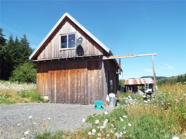 1722 Bunker Creek Rd, Adna, WA 98532 (#1341474) :: Homes on the Sound