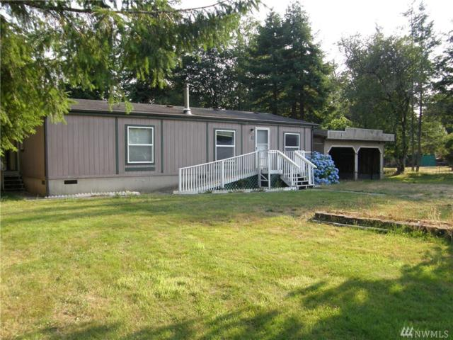 33 Prairie Gardens Road, Humptulips, WA 98552 (#1341539) :: Homes on the Sound