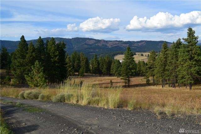 11-XXX Hwy 970, Cle Elum, WA 98922 (#1341650) :: Homes on the Sound