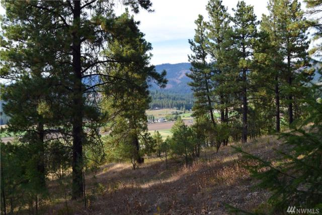 111-XX Hwy 970, Cle Elum, WA 98922 (#1341666) :: Homes on the Sound