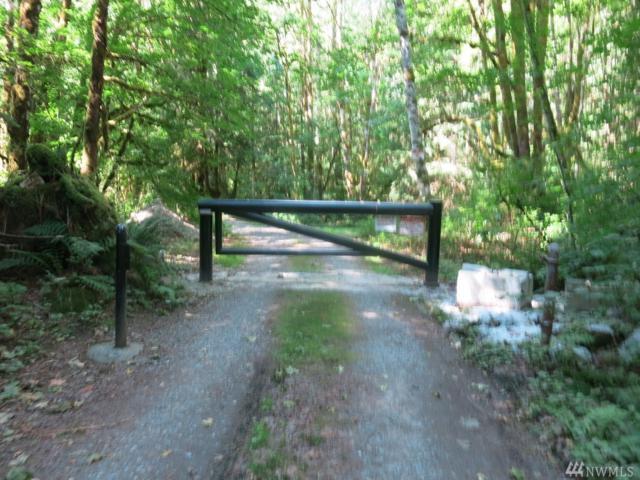 53-xx Mountain Loop Hwy, Granite Falls, WA 98252 (#1341830) :: Real Estate Solutions Group