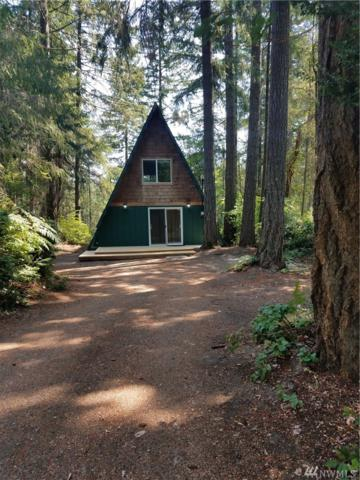 14924 105th St Ct KP, Gig Harbor, WA 98329 (#1341852) :: Better Homes and Gardens Real Estate McKenzie Group