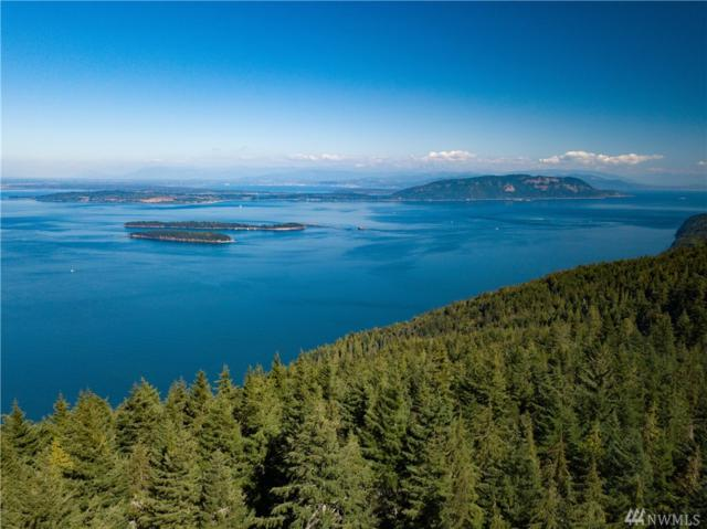 2272 Twin Lakes Dr, Orcas Island, WA 98245 (#1342882) :: Homes on the Sound