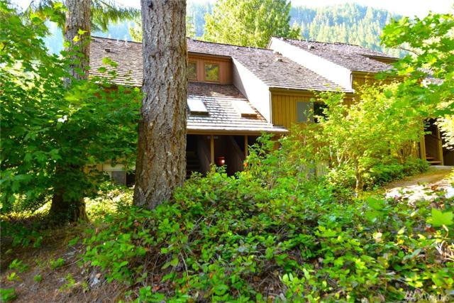 10500 Mt Baker Hwy #1003, Glacier, WA 98244 (#1342887) :: Homes on the Sound