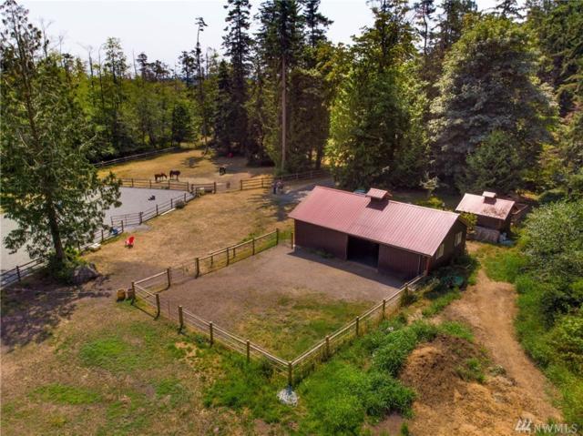 5617 Paradise Lane, Anacortes, WA 98221 (#1343009) :: Crutcher Dennis - My Puget Sound Homes