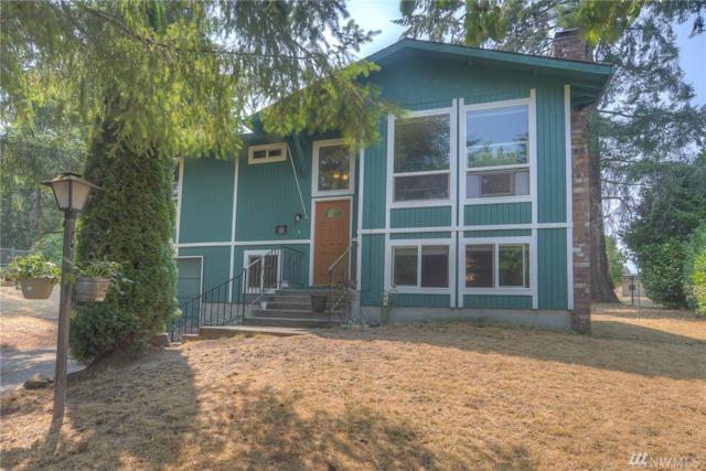 529 Choker St SE, Olympia, WA 98503 (#1343074) :: Homes on the Sound