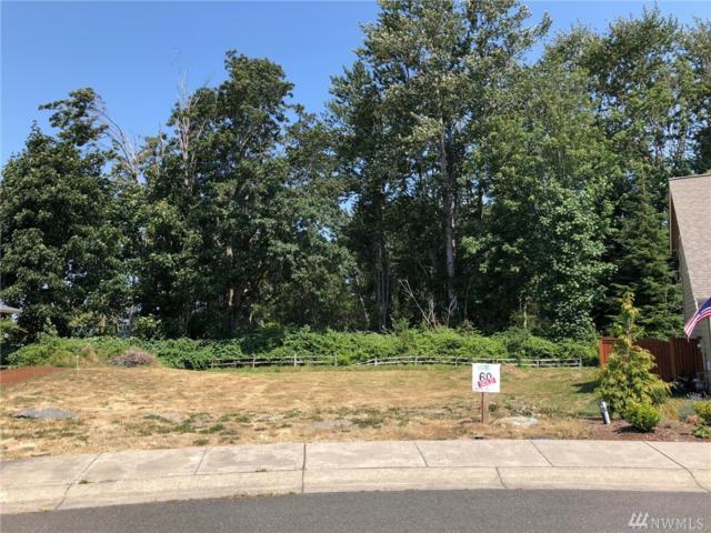 5370 Coastal Lp, Blaine, WA 98230 (#1343149) :: Keller Williams Everett