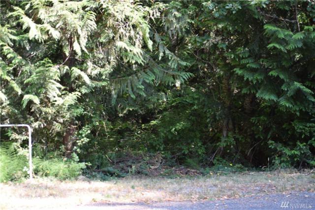 260 E Willapa Rd, Shelton, WA 98584 (#1343291) :: Record Real Estate