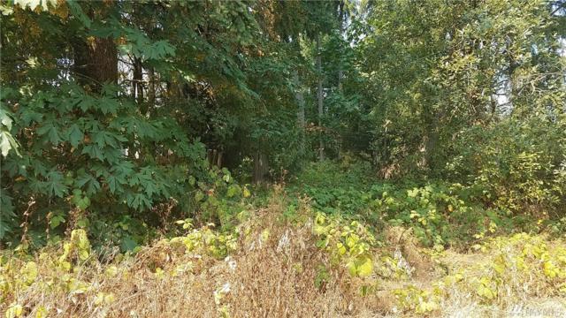 34501 52nd Ave S, Auburn, WA 98001 (#1343308) :: Ben Kinney Real Estate Team