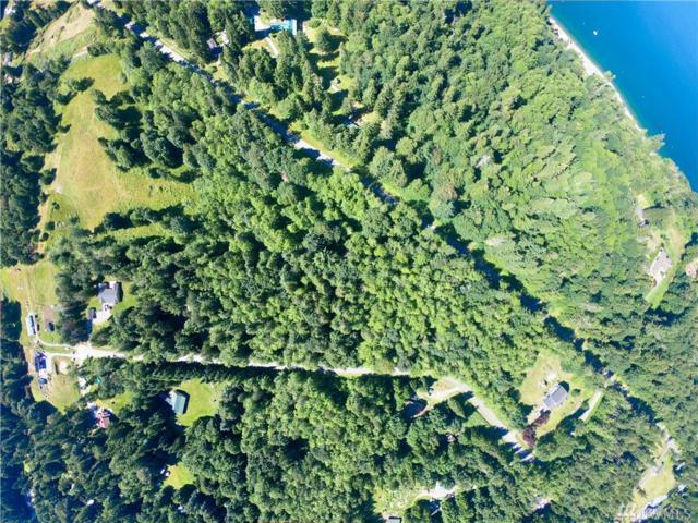 3 Tamarack Lane, Camano Island, WA 98282 (#1343564) :: Canterwood Real Estate Team
