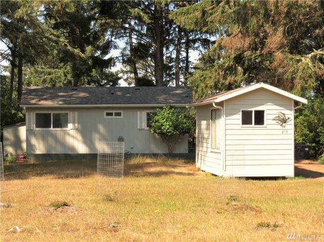 215 Dophin Ave NE, Ocean Shores, WA 98569 (#1343576) :: Beach & Blvd Real Estate Group