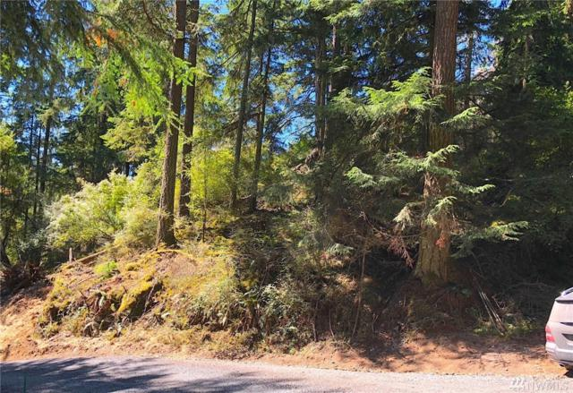 0 Roehl's Hill Rd., Orcas Island, WA 98245 (#1343845) :: Icon Real Estate Group