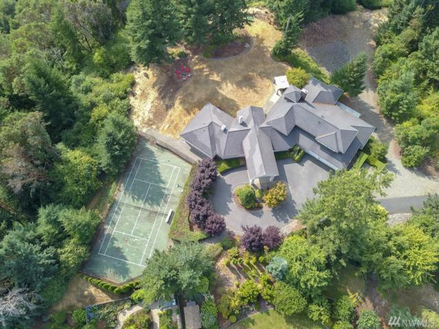1041 Paha View Dr, Fox Island, WA 98333 (#1343889) :: Canterwood Real Estate Team