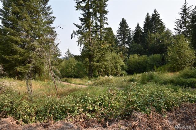 426 Butte Hill Rd, Woodland, WA 98678 (#1344104) :: The Craig McKenzie Team