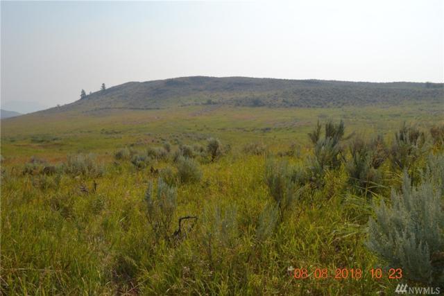 945 Ellemeham Mountain Rd, Oroville, WA 98844 (#1344172) :: The Vija Group - Keller Williams Realty