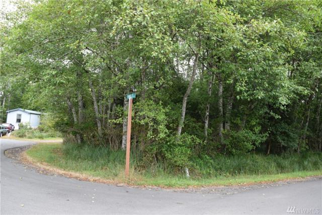 776 Park Ave NE, Ocean Shores, WA 98569 (#1344622) :: Beach & Blvd Real Estate Group