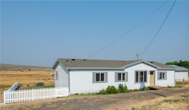 1241 Stevens Rd, Ellensburg, WA 98926 (#1344949) :: Homes on the Sound