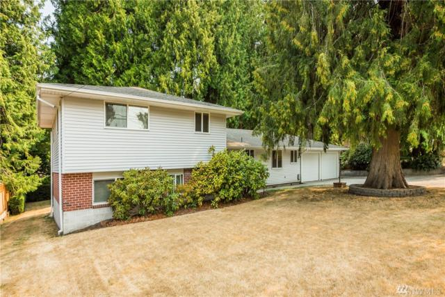 4810 26th Ave SE, Lacey, WA 98503 (#1345026) :: The Vija Group - Keller Williams Realty