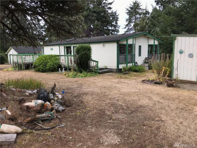 32901 Douglas Dr, Oysterville, WA 98641 (#1345149) :: Real Estate Solutions Group