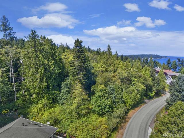 153 Baldwin Lane, Port Ludlow, WA 98365 (#1345150) :: Homes on the Sound