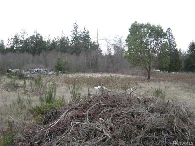0 Otto Street Lot D 948603208, Port Townsend, WA 98368 (#1345315) :: Kwasi Bowie and Associates