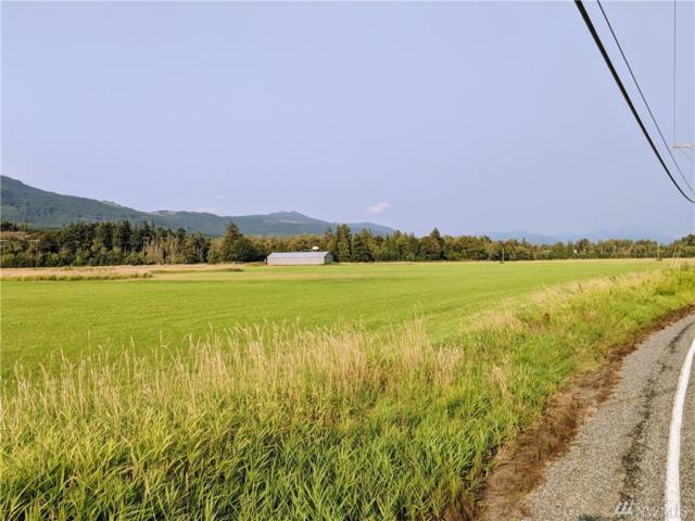 0 State Route 20 Hwy, Sedro Woolley, WA 98284 (#1345636) :: Homes on the Sound