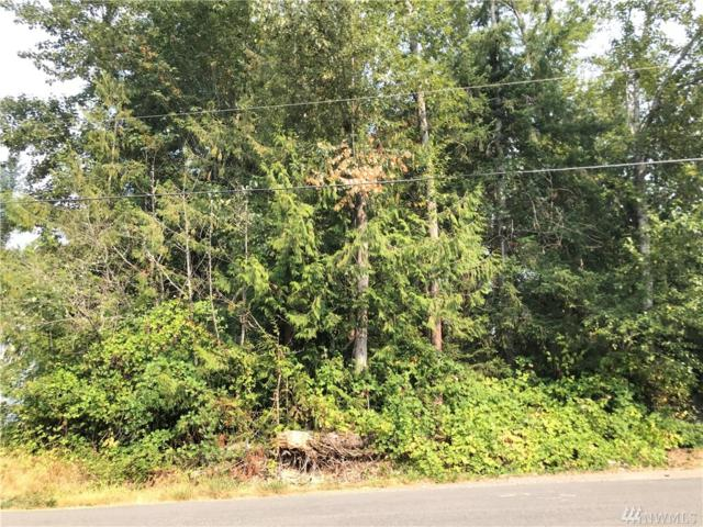 0 184th Ave E, Lake Tapps, WA 98391 (#1345908) :: Homes on the Sound