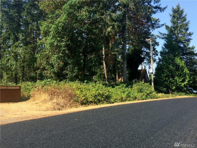 19614 24th St KP, Lakebay, WA 98349 (#1346104) :: Homes on the Sound