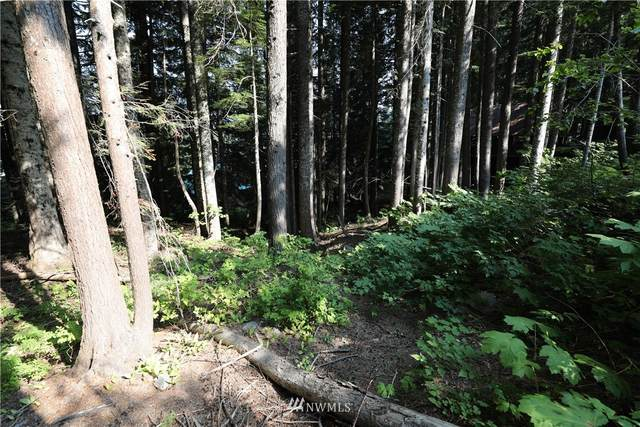 99 Snoqualmie Dr, Snoqualmie Pass, WA 98068 (#1346189) :: Canterwood Real Estate Team