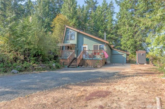 91 Azalea Lane, Brinnon, WA 98320 (#1346206) :: Homes on the Sound