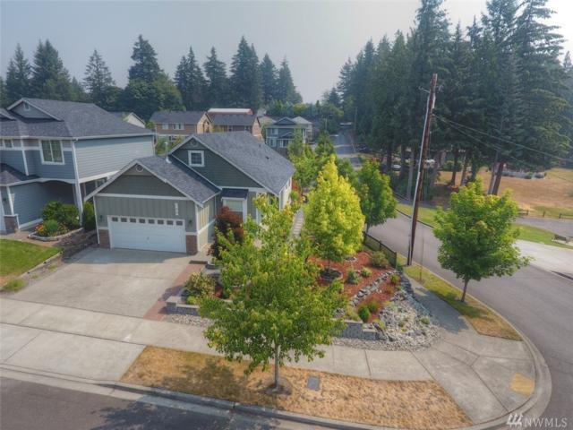 798 T St SE, Tumwater, WA 98501 (#1346541) :: Canterwood Real Estate Team