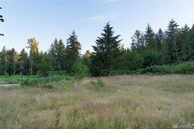 13915 233rd St Ct E, Graham, WA 98338 (#1346649) :: Canterwood Real Estate Team