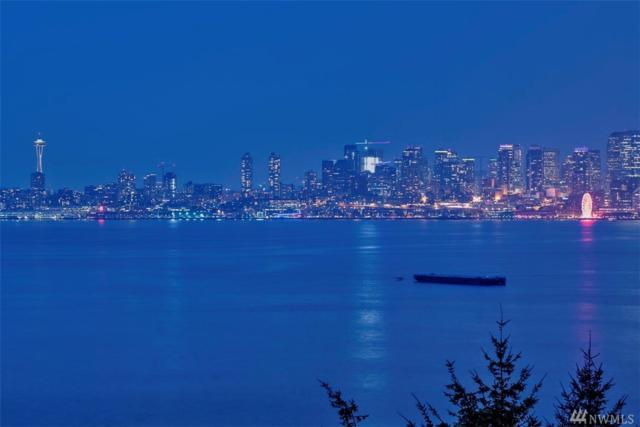 2317 Harbor Ave SW, Seattle, WA 98126 (#1346973) :: Canterwood Real Estate Team