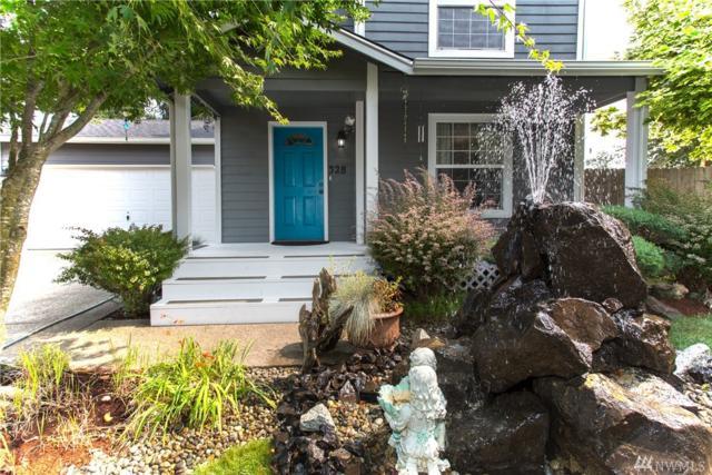 328 E Springfield Loop, Shelton, WA 98584 (#1347134) :: Beach & Blvd Real Estate Group