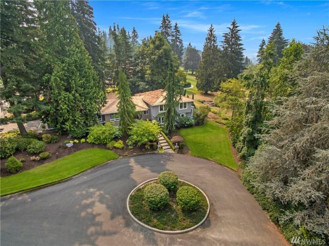 20933 NE 142nd St, Woodinville, WA 98077 (#1347212) :: The DiBello Real Estate Group