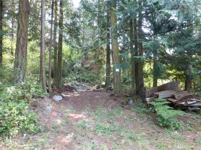 48 Kingfisher Wy, Lopez Island, WA 98261 (#1347269) :: Better Homes and Gardens Real Estate McKenzie Group