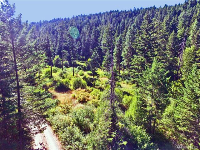 0-XXX Thornton Creek Lane, Cle Elum, WA 98922 (#1347381) :: Coldwell Banker Kittitas Valley Realty